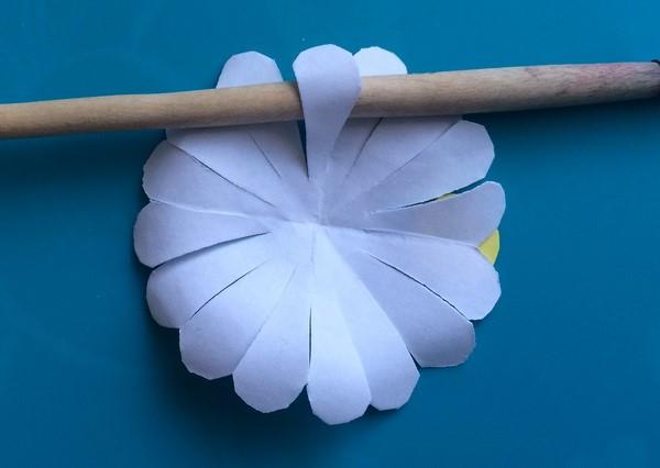 1529590164_romashki-iz-bumagi-5 Ромашки из гофрированной бумаги своими руками. Мастер-класс с пошаговыми фото
