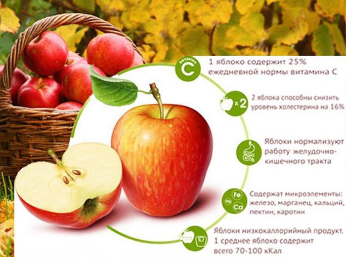 Яблоко натощак утром польза и вред